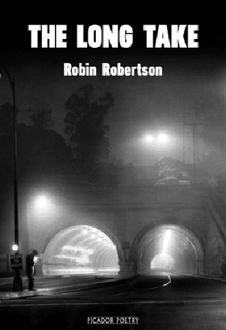 Book cover of The Long Take by Robin Robertson